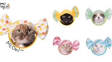 甜甜的!貓奴捨不得吃的「可愛糖果」,為家中貓喵們打扮成一顆顆糖果吧〜