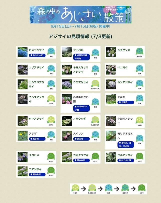 網站(https://www.kobe-park.or.jp/shinrin/)可以看到花的狀況,大家出發前可以先查閱。