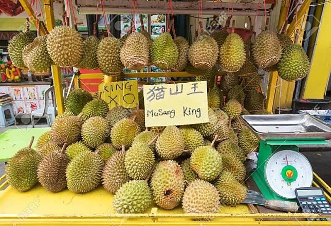 6月放到4天假期,到馬來西亞吃榴槤吧!(互聯網)