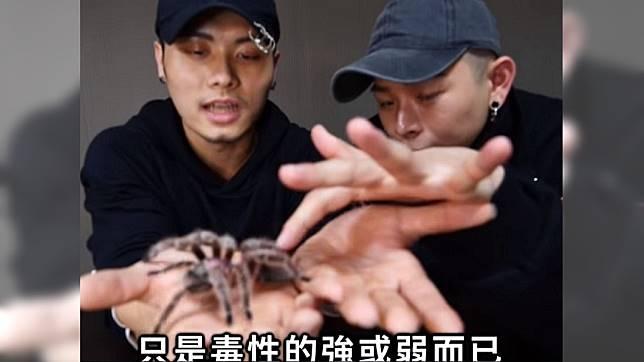 知名YouTuber挑戰把蜘蛛放進嘴裡。圖/YouTube