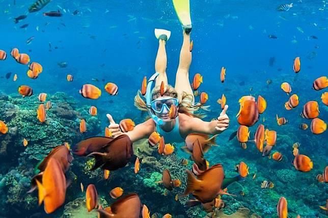 Hobi Snorkeling atau Diving? Kamu Wajib Datang ke Tempat Ini