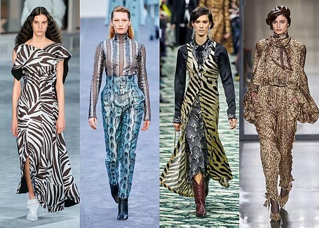 時尚又野性的動物紋稱霸各秋冬時裝展。(左至右)3.1 Phillip Lim、Roberto Cavalli、Paco Rabanne、Zimmermann(互聯網)
