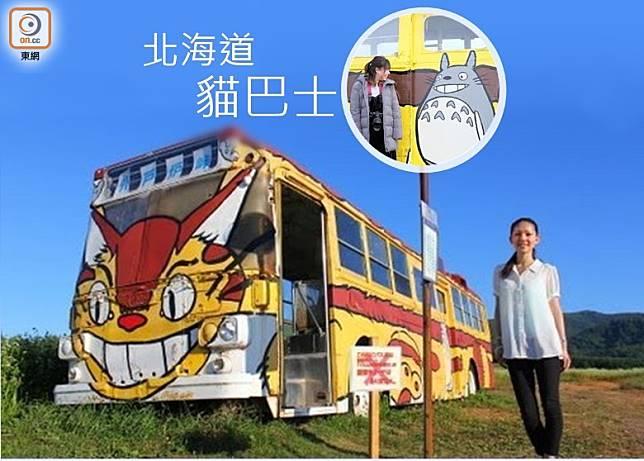 被「遺棄」貓巴士竟出現在北海道荒野上,成了當地「打卡」熱點。(互聯網)