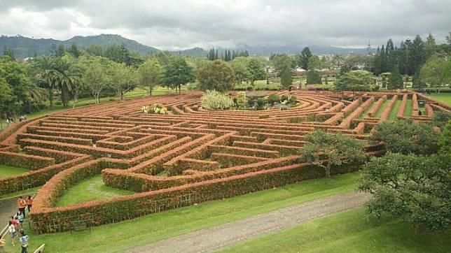 Layaknya Dalam Film Maze Runner Wisata Labirin Yang Masih