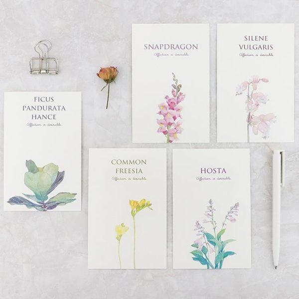 全館85折信的戀人文藝小清新米拉貝爾花園明信片 創意唯美植物DIY卡片30張