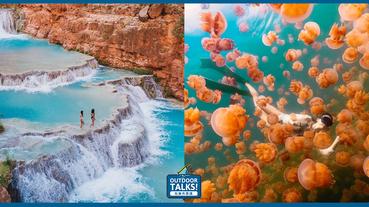 與成群水母暢游大海裡世界最特殊奇觀海景