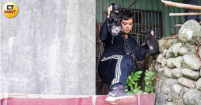 【浪浪送行者1】童年只有貓狗陪 他幫流浪動物收屍逾十年
