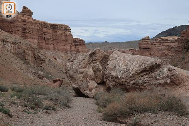 加點想像力,這對岩石像一對豬母子嗎?(李家俊攝)