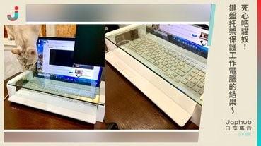 死心吧貓奴鍵盤托架保護工作電腦的結果
