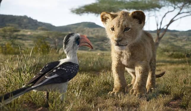 獅子由髮、走路方式到肚皮厚度都經過仔細研究,務求呈現最真實一面。(互聯網)