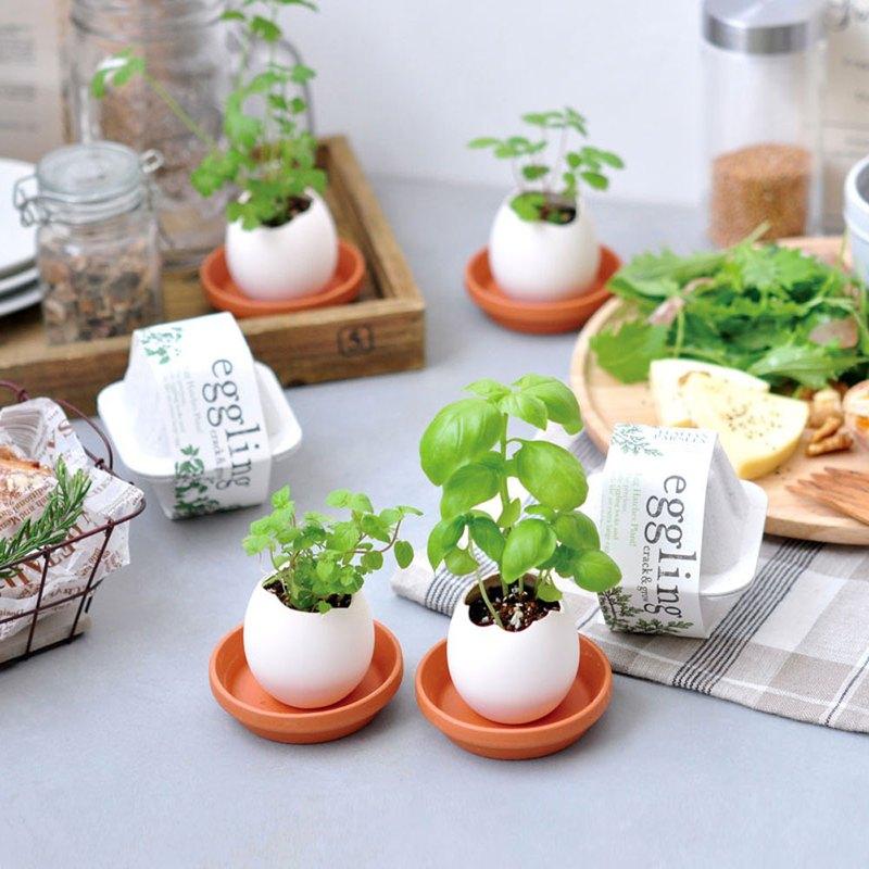 【 環保友善包裝 】Eco eggling植物栽培蛋 / Herb香草類