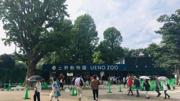 東京自由行必去動物園Top5精選!不只有上野動物園~想被動物治癒安排行程更加便利