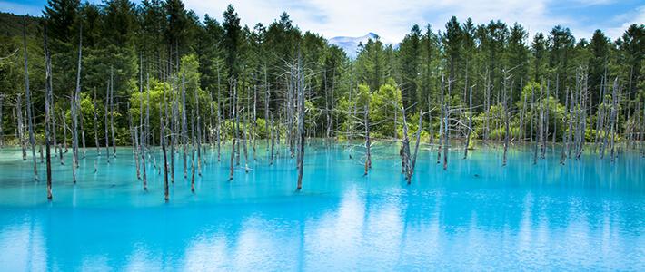 北海道 青池