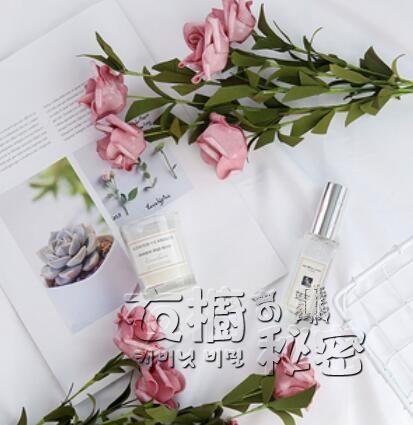 ins風仿真玫瑰花束美食美甲網紅擺拍裝飾花拍照道具攝影拍攝背景