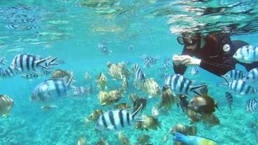 沖繩珊瑚染 DIY × 沖繩文化體驗懶人包