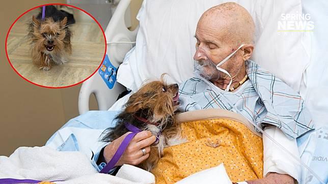 ทหารป่วยมะเร็งขอเจอน้องหมาสุดรักเป็นครั้งสุดท้าย