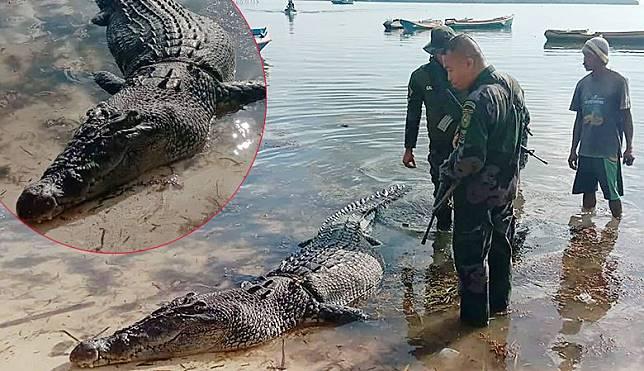 PHILIPPINES-ENVIRONMENT-ANIMAL-CROCODILE