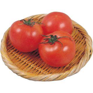 熊本県産他 トマト