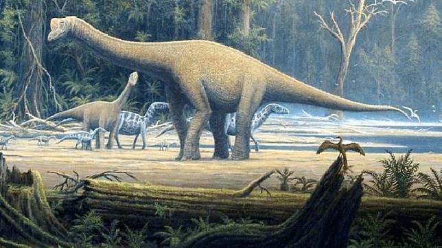 Sauropoda (thoughtco.com)