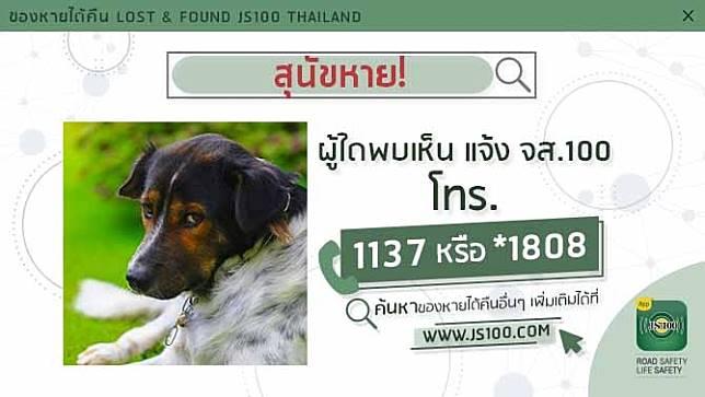 สุนัขหายจากหมู่บ้านพริมา อ.บ้านฉาง จ.ระยอง ผู้ใดพบเห็นแจ้ง JS100 โทร. *1808 หรือ 1137