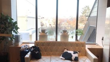 北海道道東超棒Guest House「牛之舍」牛奶起司吃到飽!