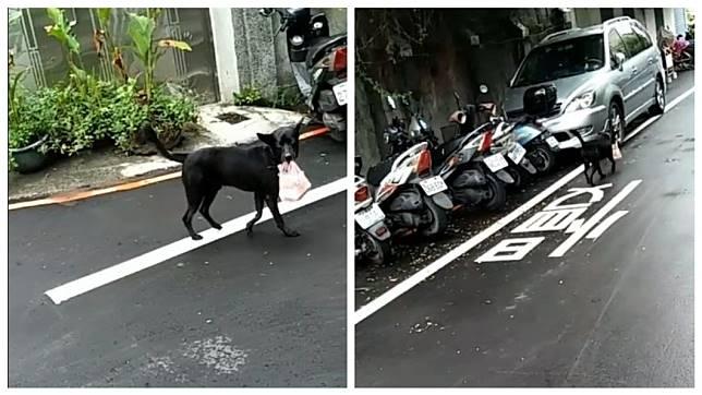 網友在路上看到一隻小黑狗口中叼著一袋早餐,一度讓他以為是小黑狗去哪偷的。(圖/翻攝自爆廢公社二館)