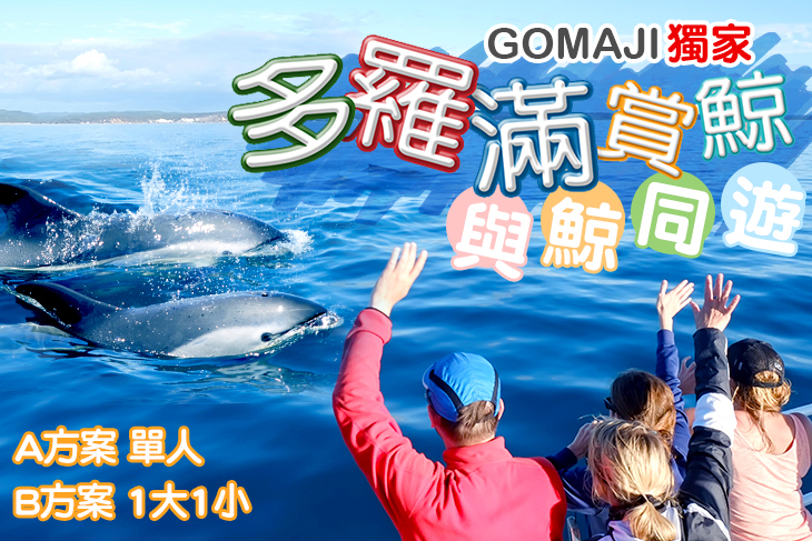GOMAJI獨家~與鯨同遊 A.單人賞鯨券一張 / B.一大一小賞鯨券
