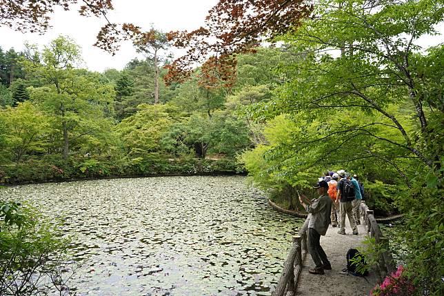 聽說去到秋天及春天,植物園亦有紅葉、櫻花可看。