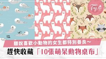 SIS自認是動物控?10張萌呆動物桌布大集合,看到牠們心情都變好了~