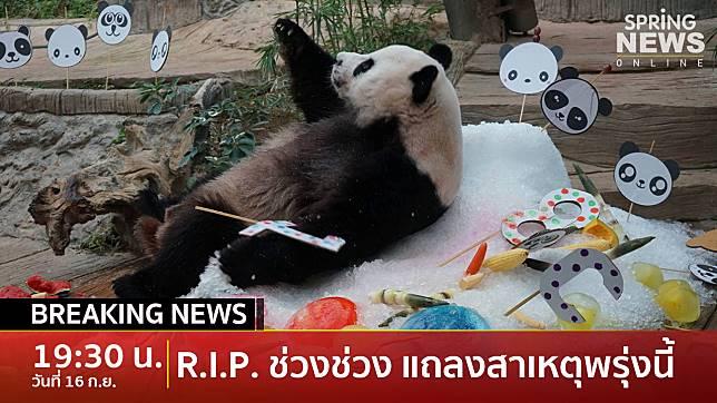 """Breaking News : เศร้า! """"ช่วงช่วง"""" ตายแล้ว แจงสาเหตุพรุ่งนี้"""