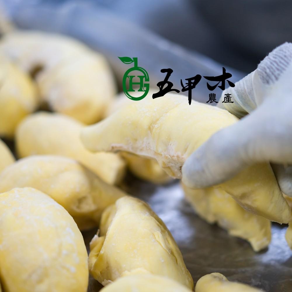 [五甲木]泰國金枕頭/原生種榴槤-在叢熟成產地直送