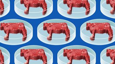 美國密蘇里州制訂了一條法律:實驗室中種出來的「肉」不能叫肉,就算你說他是素食肉也不行