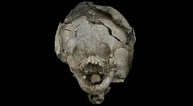 Fosil bayi berumur 2.100 tahun dimakamkan dengan pelindung kepala terbuat dari tengkorak anak-anak. Fosil ditemukan arkeolog di Ekuador, 2014-2016. ( Kredit: Sara Juengst)