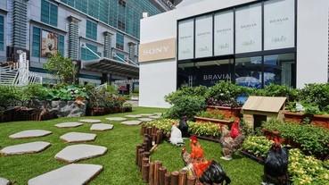 響應柯文哲田園城市政策,Sony 打造亞洲唯一 BRAVIA House 綠化建築限定店
