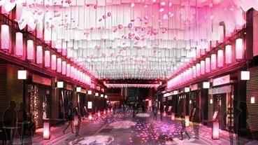 日本橋上的另類賞櫻