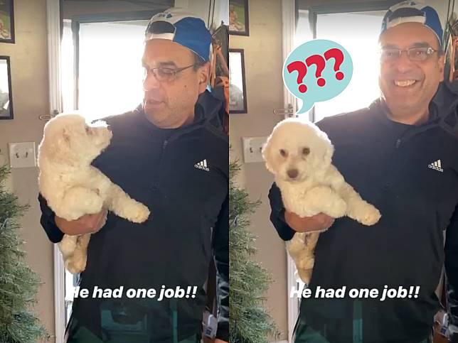 愛犬去寵物美容要丈夫接回 門一開妻子傻眼:這誰家的狗?