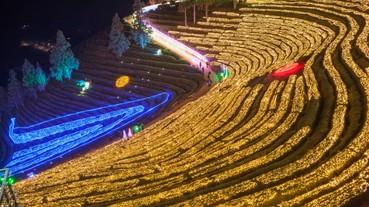 冬遊韓國不只滑雪 跨年日出、茶園燈海、冰上釣魚特色慶典體驗韓國文化