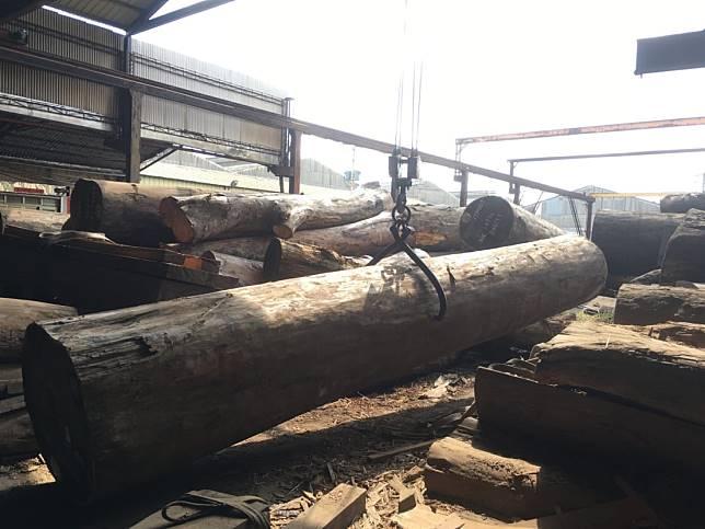 原木製材廠