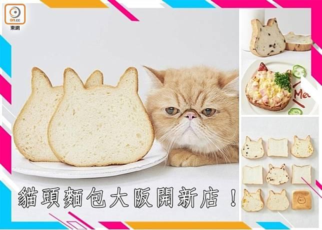 ねこねこ食パン的貓頭麵包紅爆網絡,分店愈開愈多,最近新鮮滾熱辣在大阪天王寺開了分店。