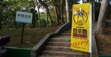 高雄市澄清湖捕獲200隻白線斑蚊!爆登革熱高風險,不排除封園