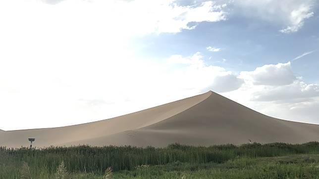 普羅旺斯也面臨沙漠化危機