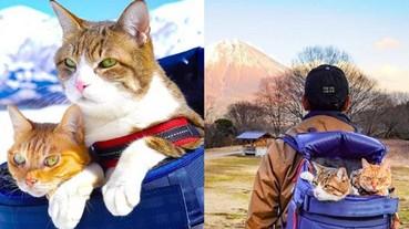 帶著貓咪去旅行!日本超狂貓奴 8 年來背著喵星人走遍各地 見證超過 1000 個美麗景點!
