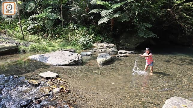 頭城農場非常大,有叢林亦有溪澗,在夏天還可走進溪中玩水。(劉達衡攝)