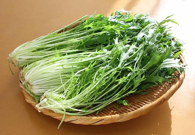 """""""มิซูน่า"""" ผักราคาถูกที่มีคุณค่าอาหารมากล้น กับวิธีการรับประทานให้อร่อยแบบญี่ปุ่น"""