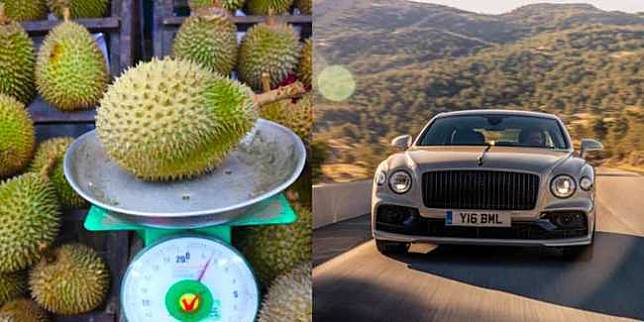 Ilustrasi durian dan mobil mewah (World of Buzz)