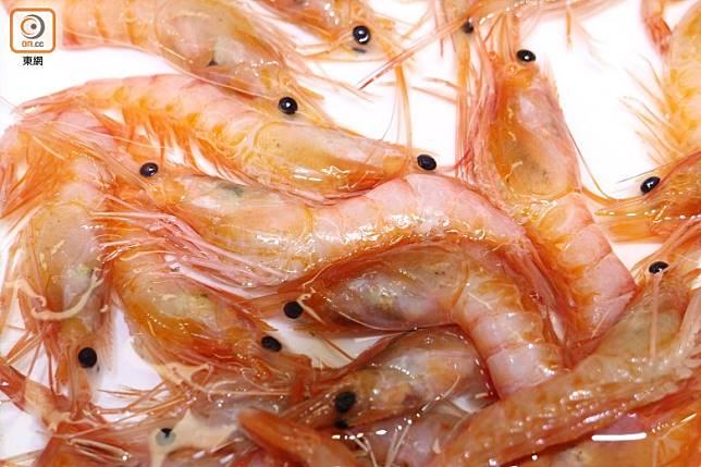 大家都是愛蝦之人,不想食到絕種,購買海蝦時不妨問清楚產地及捕撈方法,滿足食欲之餘也保持生態平衡。(蔡浩文攝)