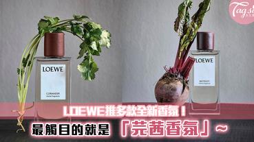 LOEWE推多款全新香氛!甜根菜、牛至、番茄葉!而最觸目的就是「芫茜香氛」~