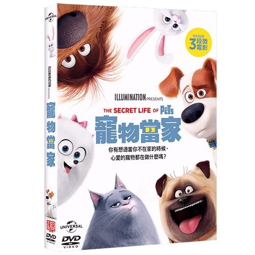 寵物當家 The Secret Life of Pets (DVD)