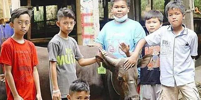 Tujuh bocah asal Kampung Ardio menabung bersama demi kurban sapi (Facebook)