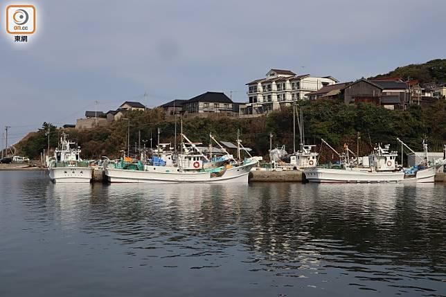 在間人港其實只有5艘小漁船獲批準捕蟹,它們的籠可沉入500米深海底下。(劉達衡攝)